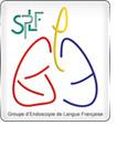 logo-gelf